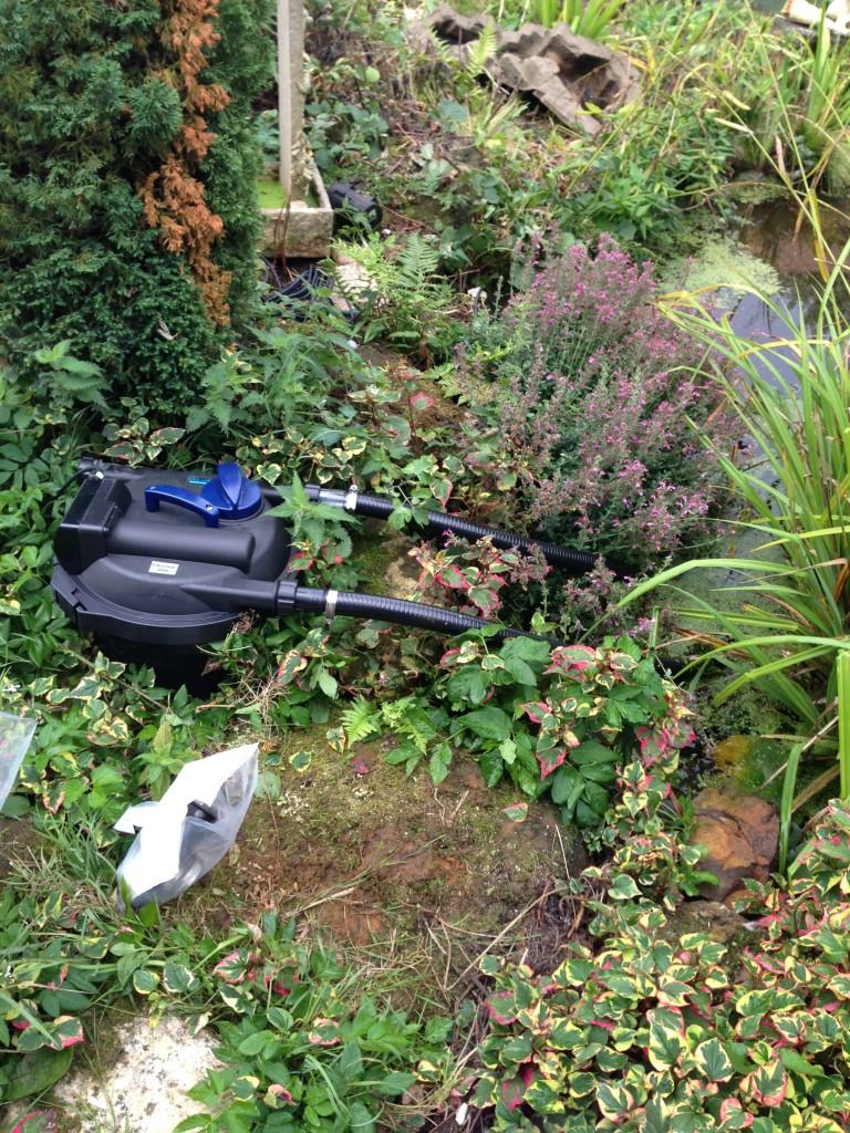 Pond filtration luton bedfordshire maltby aquatics for Pond filter maintenance